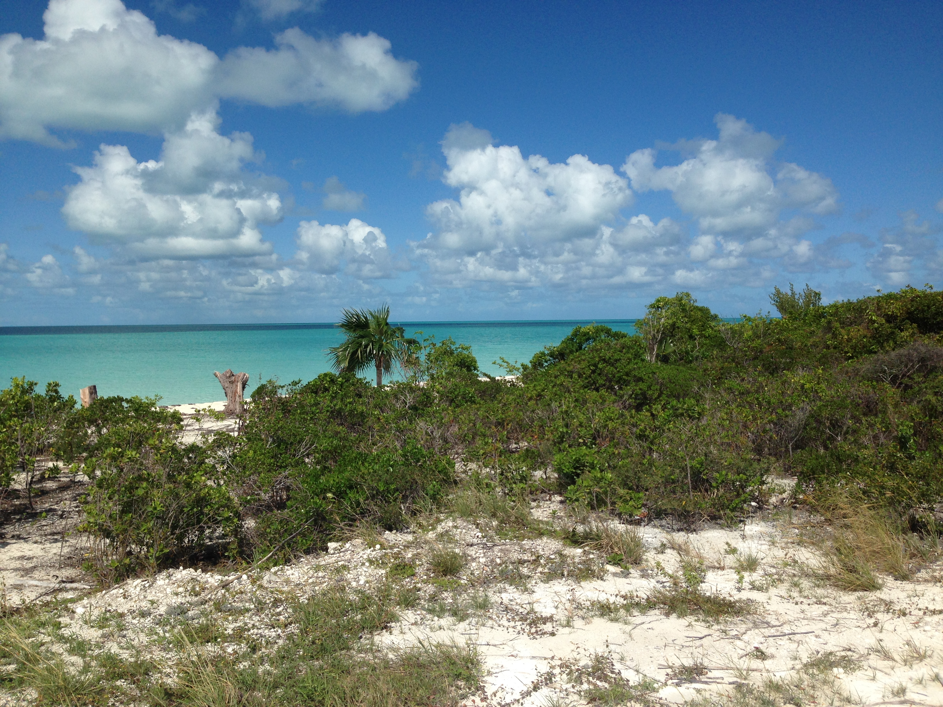 Mission Flight to Eleuthera, The Bahamas – Great Commission